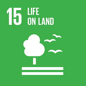 SDG #15 - Life On Land - The Global SDG Awards